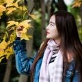 E摄会世纪公园乐享银杏树下的秋天