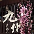 2.25活力日本展