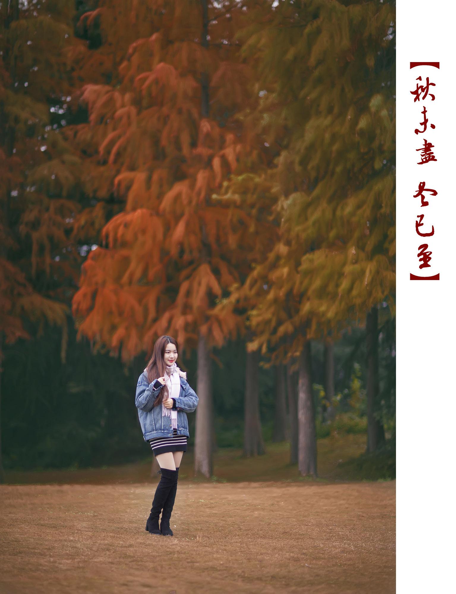 _MG_0519.jpg