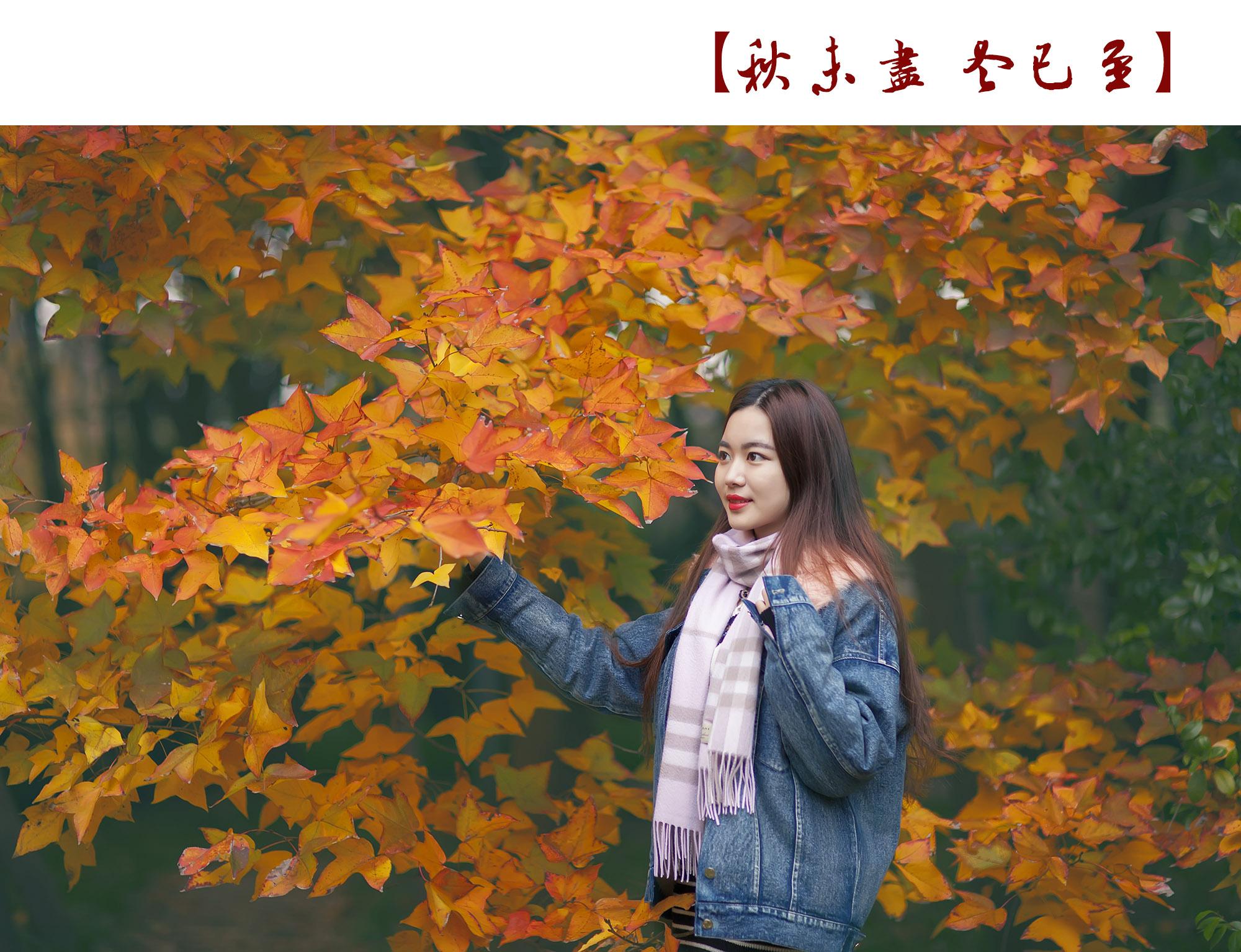 _MG_0533.jpg