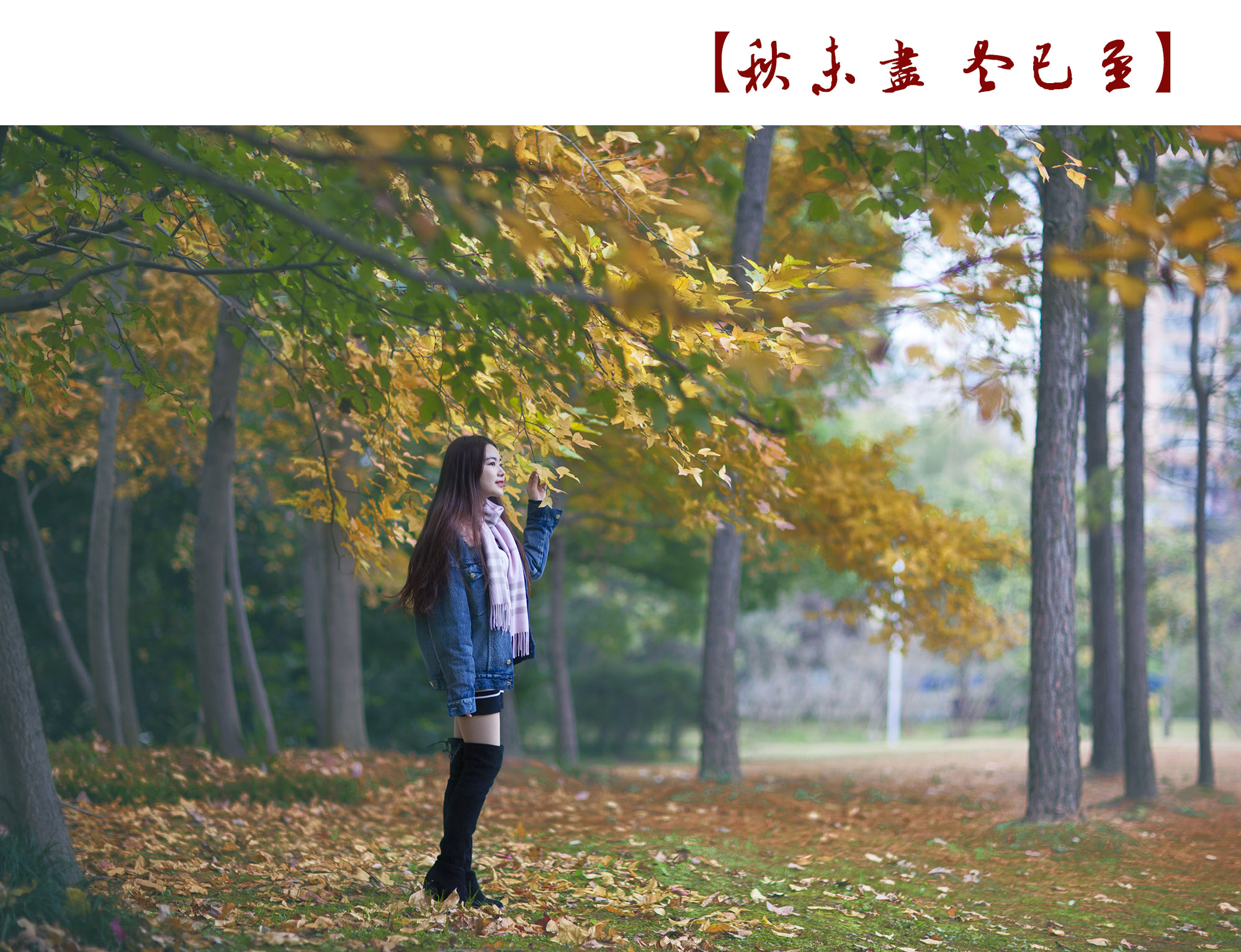 _MG_0542.jpg